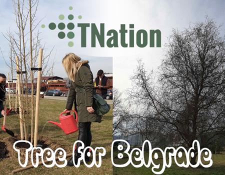 tree for belgrade initiative tnation