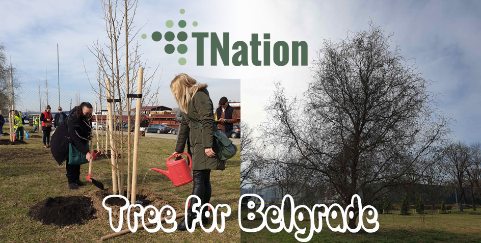 tree for belgrade initiative tnation