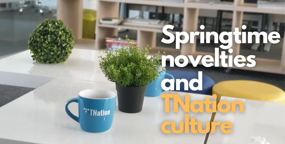 TNation team, team culture, nearshoring services